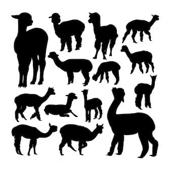 Silhuetas de animais alpaca