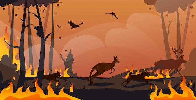 Silhuetas de animais australianos correndo de incêndios florestais na austrália incêndio florestal árvores queimadas desastre natural conceito intenso laranja chamas horizontal