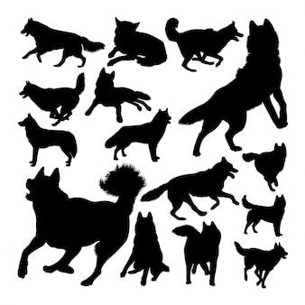 Silhuetas de animais cães husky