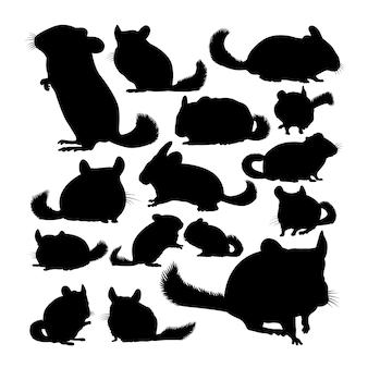 Silhuetas de animais chinchila