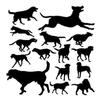 Silhuetas de animais de cachorro labrador