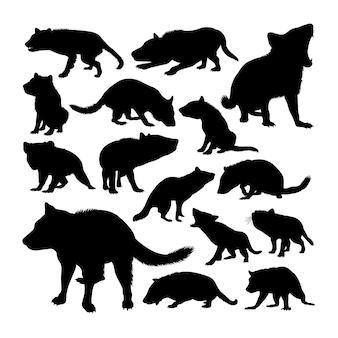 Silhuetas de animais do demônio da tasmânia
