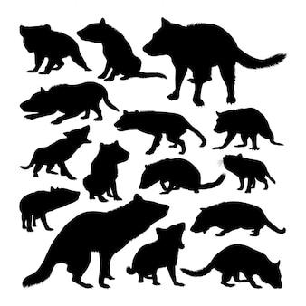 Silhuetas de animais do diabo da tasmânia
