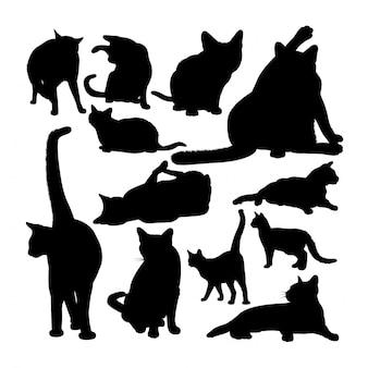Silhuetas de animais gato siamês