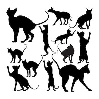 Silhuetas de animais gato sphynx bonito