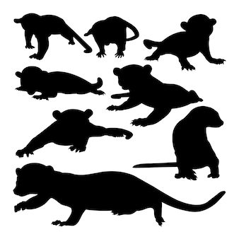 Silhuetas de animais kinkajou
