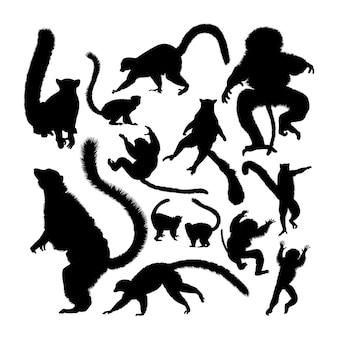 Silhuetas de animais lêmures
