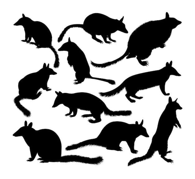 Silhuetas de animais numbat