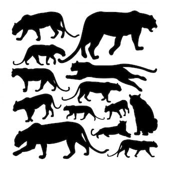 Silhuetas de animais predadores leopardo.
