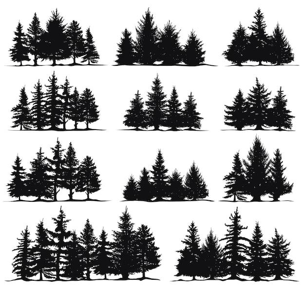 Silhuetas de árvores de natal. abetos natureza abetos, floresta de coníferas pinheiros perenes isolado conjunto de ilustração vetorial. silhueta de pinheiros natalinos