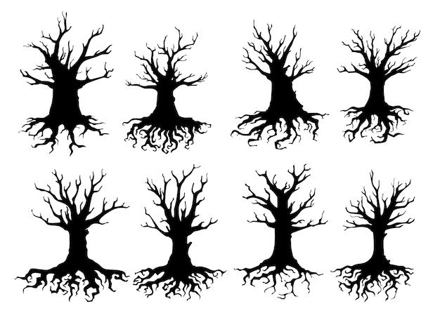 Silhuetas de árvores mortas