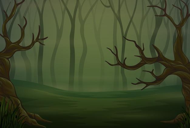 Silhuetas de árvores na floresta à noite escura