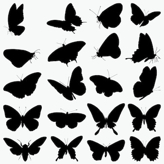 Silhuetas de borboletas
