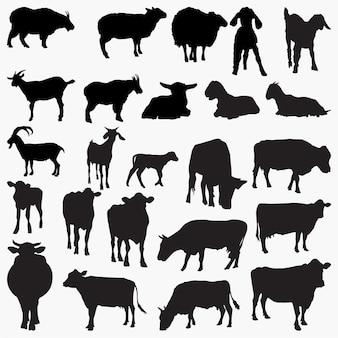 Silhuetas de cabra de vaca