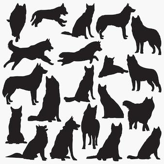 Silhuetas de cachorro husky siberiano