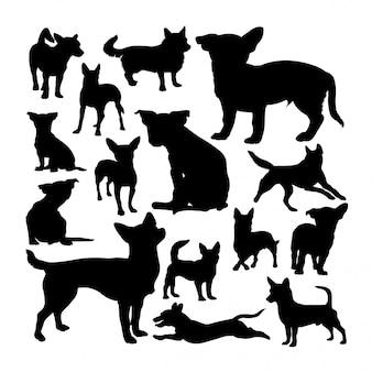 Silhuetas de cachorro podengo português