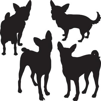 Silhuetas de cães no rack