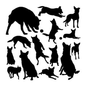Silhuetas de cão de gado australiano