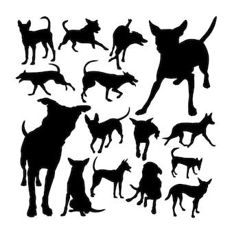 Silhuetas de cão de montanha formosan
