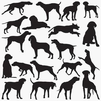 Silhuetas de cão de ponteiro