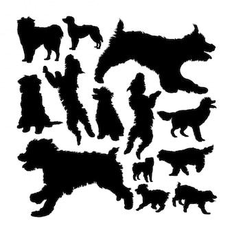 Silhuetas de cão pastor dos pirinéus