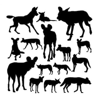 Silhuetas de cão selvagem africano lycaon.