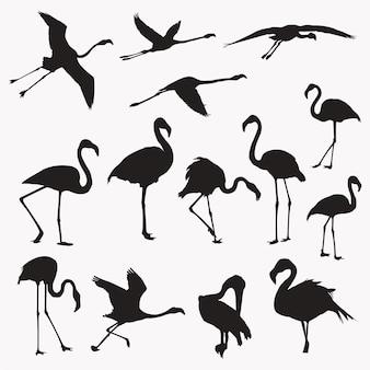 Silhuetas de flamingo