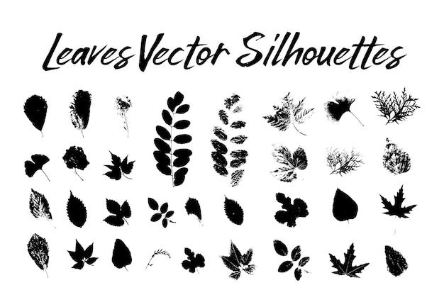 Silhuetas de folhas de árvore. plantas e natureza