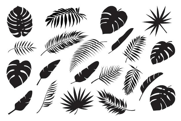 Silhuetas de folhas de palmeira folha tropical monstroa banana e coco folhagem da selva floresta exótica