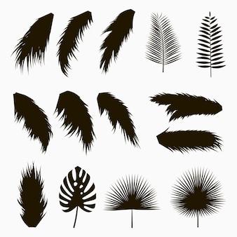 Silhuetas de folhas tropicais e de palmeira conjunto de folhas de plantas exóticas da selva isolada
