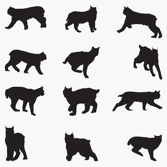Silhuetas de gato lince
