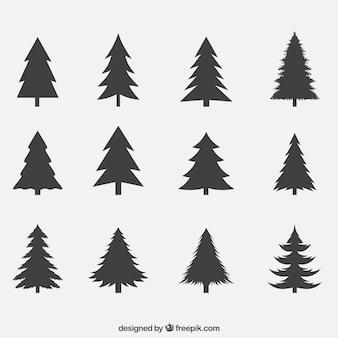 Silhuetas de pacote de pinheiros