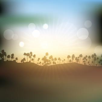 Silhuetas de palmeiras contra o céu do sol