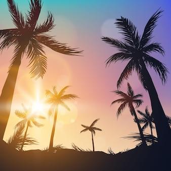 Silhuetas de palmeiras no fundo verão