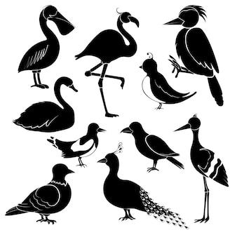 Silhuetas de pássaros diferentes em fundo branco. pelicano, flamingo, pica-pau, cisne, pega, andorinha, corvos, guindastes, pavão, pombo.