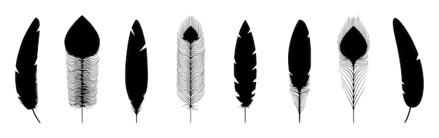 Silhuetas de penas negras. ícones de penas de vetor isolados no fundo branco