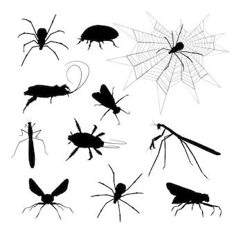 Silhuetas de vários insetos