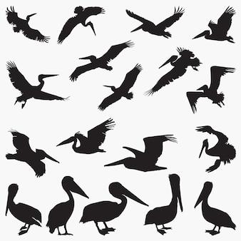 Silhuetas de vetor de pelicano