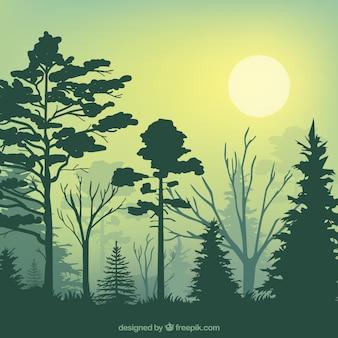 Silhuetas floresta verde