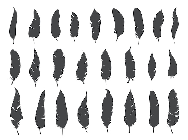 Silhuetas rústico penas étnicas, glifo tinta monocromática boho vetor penas tribais.