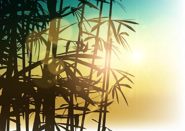 Silueta, de, bambu, ligado, luz solar, fundo