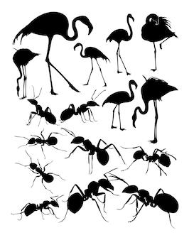 Silueta, de, flamingo, e, formigas