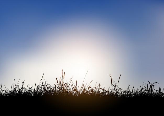 Silueta, de, gramíneo, paisagem, contra, céu azul