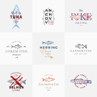 Sinais de peixes retrô de qualidade premium ou conjunto de modelos de logotipo. esboços de peixe vintage desenhado de mão com tipografia elegante, atum, truta, salmão, arenque, etc. grande restaurante e emblemas de frutos do mar.
