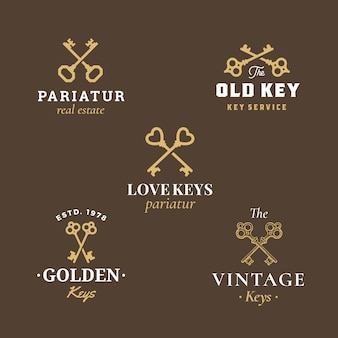 Sinais do vetor abstrato de imóveis, símbolos ou logo templates set com coleção de emblemas de chaves cruzadas diferentes.