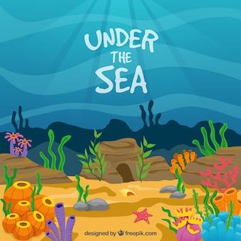 Sob o mar com fundo colorido algas