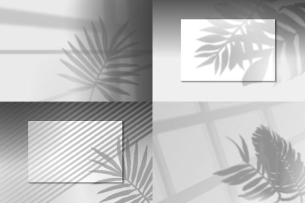 Sobreposição de efeito transparente com sombras de folhas