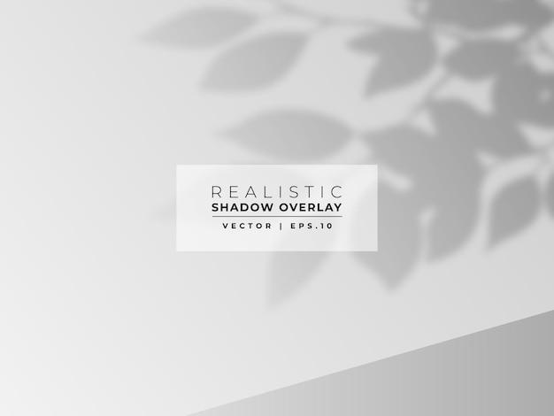 Sobreposição de sombra de folha na parede
