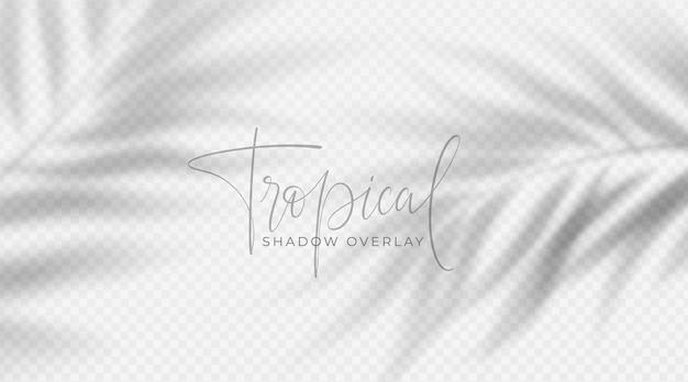 Sobreposição de sombra tropical