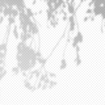 Sobreposição transparente de vetor realista manchada sombra de folhas de galho. elemento de design para apresentações e mockups. efeito de sobreposição da sombra da árvore.